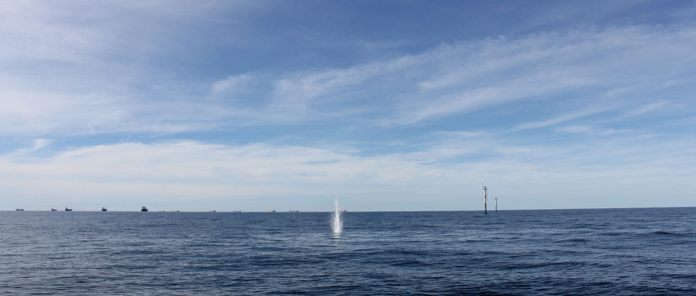 oil spill tracking buoy being deployed from helicopter