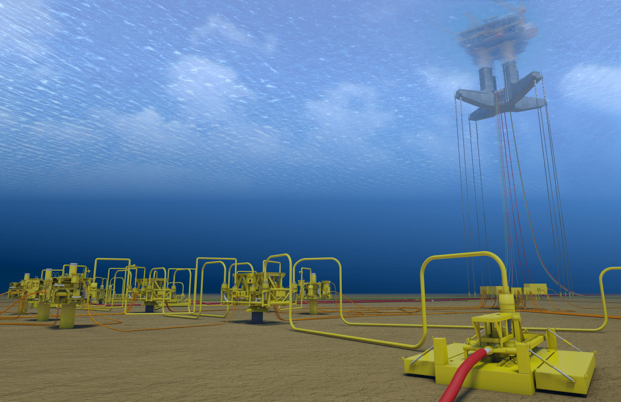 subsea asset management